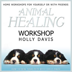 Holly Davis - Animal Healing Workshop CD